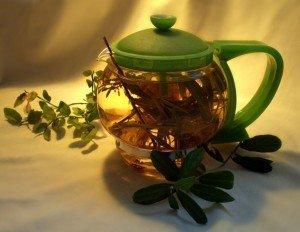чай с эвкалиптом