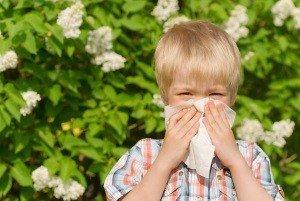 аллергия у ребенка на цветущие цветы
