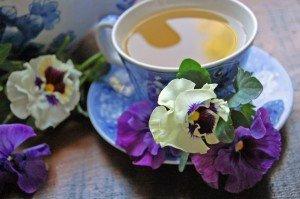 фиалковый чай от кашля